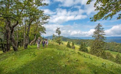 Der Weissenstein im Kanton Solothurn ist Ausgangspunkt zu vielen schönen Wanderungen.