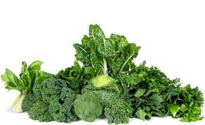 Je dunkler das Grün, desto mehr Chlorophyll enthält das Gemüse.
